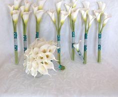 Callie lillies