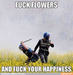 The cheer-up potential of this is limitless. Screw you, flowers!