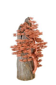 Bonsai draad boom Draad boom Sculpture van BonsaiWireTree op Etsy