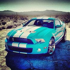 Now thats what i call a car!- Shelby GT 500!