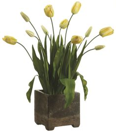 Bloom Room Luxe 29'' Tulip In Cement Pot-Yellow | Floral Arrangement | Online Only Product