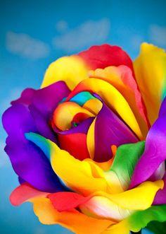 ::::♡ ♤ ♤ ✿⊱╮☼ ☾ PINTEREST.COM christiancross ☀❤ قطـﮧ ⁂ ⦿ ⥾ ⦿ ⁂ ❤U •♥•*⦿[†] ::::Rose