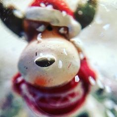 #miniature #raindeer in a #Christmas #crystal #ball with #snow taken by #iphone #iphone6s using #macro #lens #macrophotography #closeup