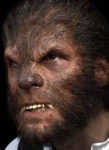 Werewolf Nose Prosthetic - Bing images