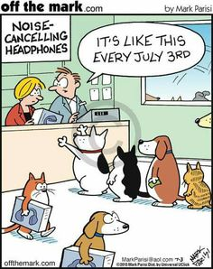 Remember to protect your kitties indoors #4thjuly #fireworks