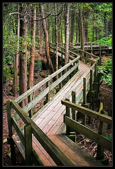 Walk in the Park, Crawford Lake Park - Milton, Ontario, Canada <3