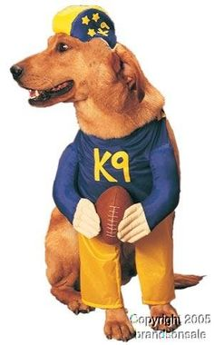 Pet Football Player Dog Costume For Large Dogs - http://www.thepuppy.org/pet-football-player-dog-costume-for-large-dogs/