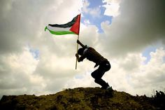 Stay fight until we return back Palestine History, Palestine Flag, Israel Palestine Conflict, Camera Art, Palestinian Embroidery, Islamic Paintings, Digital Art Girl, Jerusalem, Cover Design
