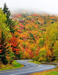 Route 100 in Windham County, Vermont.
