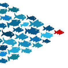 12 TED Talks on Leadership https://www.ted.com/playlists/140/how_leaders_inspire?utm_campaign=social&utm_medium=referral&utm_source=facebook.com&utm_content=playlist&utm_term=social-science