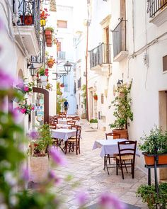 Top things to do in Puglia, such as Alberobello, Lecce, Locorotondo and Polignano a Mare. Stuff To Do, Things To Do, Destination Voyage, Lake Garda, Stay The Night, Lake Como, Old Town, National Parks, Road Trip