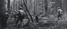 28th Infantry Division troops advance through the Hürtgen Forest  in Germany on November 2, 1944, at the start of a long, bloody fight. (PFC G. W. Goodman/U.S. Army/National Archives)