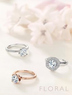 The bottom left :O oh my. That's pretty perfect. Engraved, rounded band, sparkle on the mount. Jewelry Ads, Photo Jewelry, Jewelry Rings, Jewelry Design, Women Jewelry, Fashion Jewelry, Band Photography, Jewelry Photography, Dimond Ring