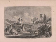 Original Antique Engraving Sugar plantation in Guadeloupe, French Carribean by reveriefrance on Etsy