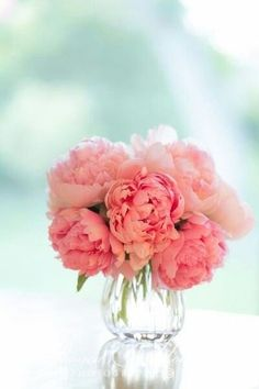 Passion  Beautiful peonies. paper whites with snap dragons in large white vases