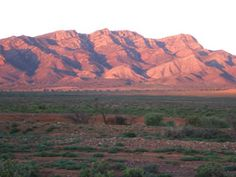 I love the Flinders Ranges - and I need some time out there with a camera & a sketch book. S.
