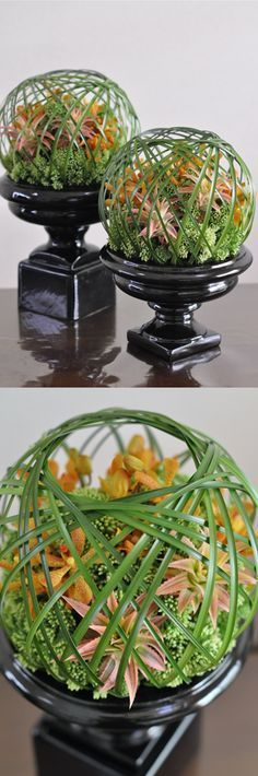 I love different cage styles in floral design; how friggin cool! Table Flowers, Love Flowers, Flower Vases, Fresh Flowers, Beautiful Flowers, Art Floral, Deco Floral, Floral Design, Ikebana