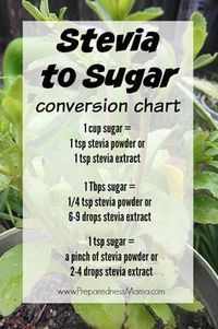 Stevia to sugar conversion chart, plus growing and preserving methods. Since being diabetic since 1997 and trying many artificial sweeteners, I was surprised how much I liked stevia! Diabetic Recipes, Low Carb Recipes, Healthy Recipes, Diabetic Foods, Diabetic Cookies, Keto Desert Recipes, Candida Diet Recipes, Diabetic Meal Plan, Sugar Free Desserts