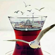 Istanbul – Naime Gündüz Ince – Join the world of pin Roadtrip Europa, Hagia Sophia Istanbul, Istanbul Travel, Istanbul City, Turkish Tea, Turkey Photos, Brewing Tea, Cappadocia, Turkey Travel
