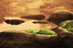 Verde en la roca