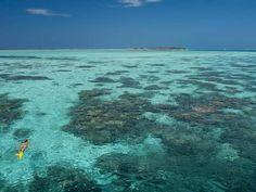 Conrad Maldives Rangali Island - Snorkelling