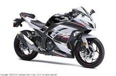 Kawasaki Ninja® 300 ABS SE   Fueling Your Passion For Adventure! www.rideDMS.com  Diamond Motor Sports  Dover, DE  (800) 694-6600