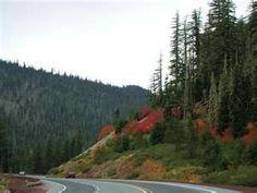 Santiam Pass, Oregon