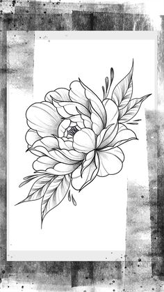 Peony Drawing, Lilies Drawing, Floral Drawing, Floral Tattoo Design, Flower Tattoo Designs, Flower Tattoos, Bild Tattoos, Dog Tattoos, Sleeve Tattoos