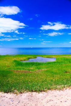 Cape Cod Bay (by cmav)