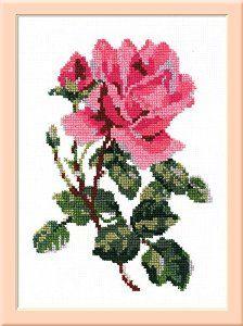 Pink rose - cross stitch