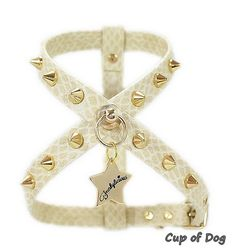 Harnais chien Punk Snake Funkylicious - Ivory https://www.cupofdog.fr/collier-harnais-chihuahua-petit-chien-xsl-243.html