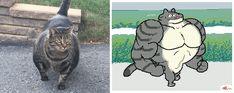 On its way to get pet. On its way to get pet. Funny Animal Memes, Cute Funny Animals, Funny Cats, Cute Comics, Funny Comics, Cats In Ancient Egypt, Dog Facts, Beautiful Cats, Cute Cartoon
