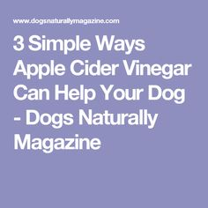3 Simple Ways Apple Cider Vinegar Can Help Your Dog - Dogs Naturally Magazine