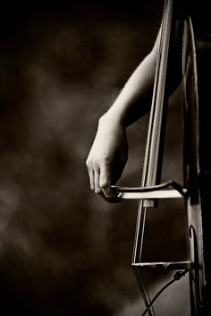 Cello... my favorite instrument. I love the range of sounds you can get from it.