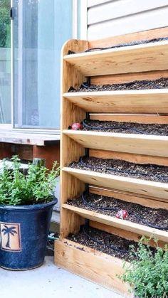 Balcony Garden, Garden Beds, Indoor Garden, Home And Garden, Vertical Garden Design, Diy Outdoor Furniture, Garden Planning, Garden Projects, Garden Inspiration