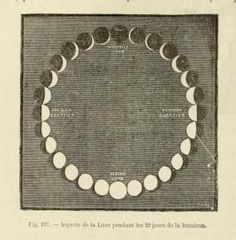 Phases of the moon. 1884.