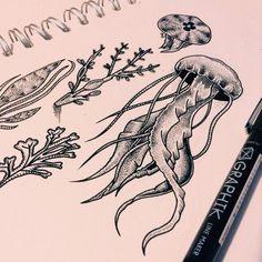 coral fang