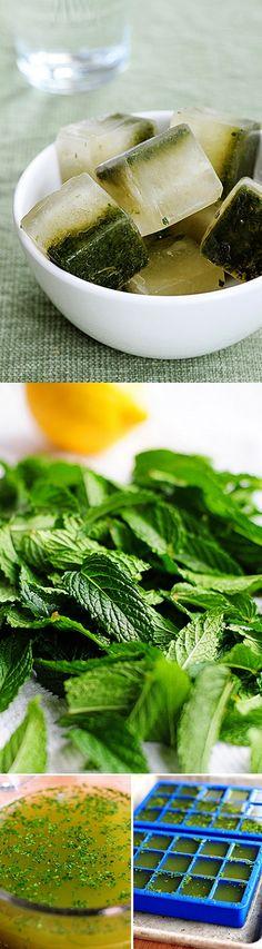 exPress-o: Nifty Lemon-Mint Ice Cubes