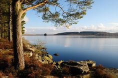 Kielder Water - man made reservoir- the largest in northern Europe.