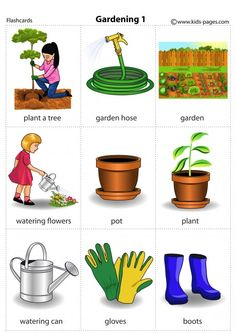 English Vocabulary Words, English Idioms, English Words, Worksheets For Class 1, Preschool Worksheets, Kids English, Learn English, Fruits Name In English, Vocabulary Strategies