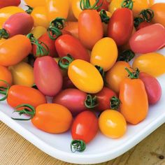 Tomato 'Rainbow Blend' F1 Hybrid - Tomato Seeds - Thompson & Morgan All Vegetables, Planting Vegetables, Fruits And Veggies, Vegetable Garden, Plum Tomatoes, Cherry Tomatoes, Tomato Plants For Sale, Tomato Dishes, Cape Gooseberry