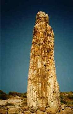 Discover Petrified Forest of Lesbos in Lesbos Prefecture, Greece: The rocky remains of an ancient Greek forest. Places Around The World, Around The Worlds, Republic Of Macedonia, Greece Holiday, Ancient Greece, Ancient Ruins, Mystery Of History, Greece Travel, Greek Islands