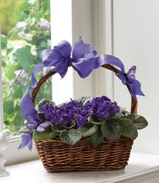 My Violet Blooming Garden  Delicate decorative violets adorn this charming country basket, abounding with the sweetest array of flowers that a pretty pasture could offer. Stop by the a countryside road and pick those favorite luscious violet blooms and taken them away into a place in your heart. My Violet Blooming Garden is the perfect gift for that special someone on any occasion!