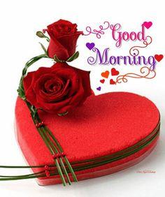 resultado de imagen para good morning my love gif bharath