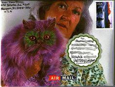 Marti Gras Cat?