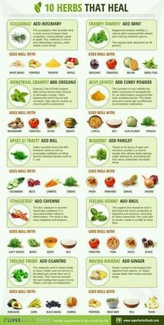 Herbs for Allergy Relief