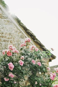stone cottage and climbing roses Rose Cottage, Garden Cottage, White Cottage, Climbing Roses, English Roses, Old World Charm, Rose Buds, Pretty Flowers, Pink Roses