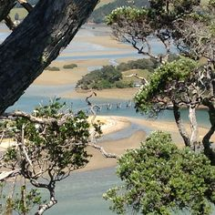Pataua Bridge from Pataua Mountain, Northland, New Zealand Bridge, New Zealand, River, Kiwi, Beach, Outdoor, Outdoors, The Beach, Bro