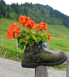 Free Image on Pixabay - Hiking Shoes, Shoe, Mountain Shoe Black And White Love, Black And White Pictures, Different Kinds Of Flowers, Recycled Decor, Splash Images, Splash Photography, Monochrome Color, Unique Plants, Diy Garden Decor