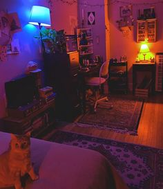 Super small Studio apartment with cozy lighting (plus a furry friend) : CozyPlaces Cozy Studio Apartment, Studio Apartment Decorating, Apartment Ideas, Small Studio Apartments, Tiny Studio, Studio Studio, Small Cozy Apartment, Hippie Apartment, Apartment Checklist